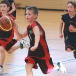 TV Dingolfing sucht Basketball-Nachwuchs